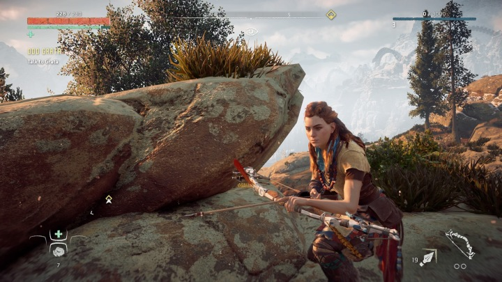 Horizon Zero Dawn™
