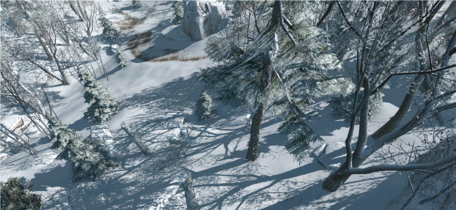AC3-Snow-3.jpg
